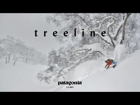 Treeline (Full Film) | The Secret Life of Trees