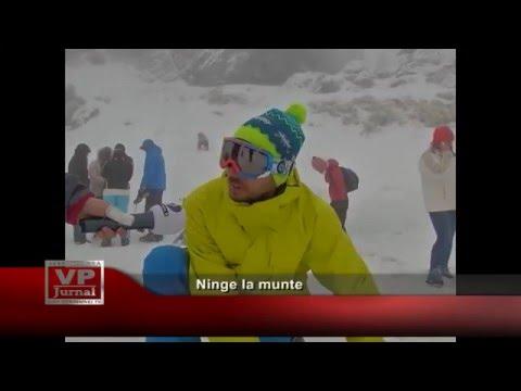 Ninge la munte