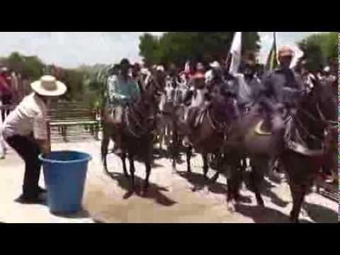 4° video da cavalgada de são miguel arcanjo,dr:severiano stio merejo