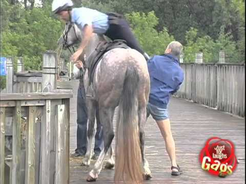 Horse Police Mount Fail