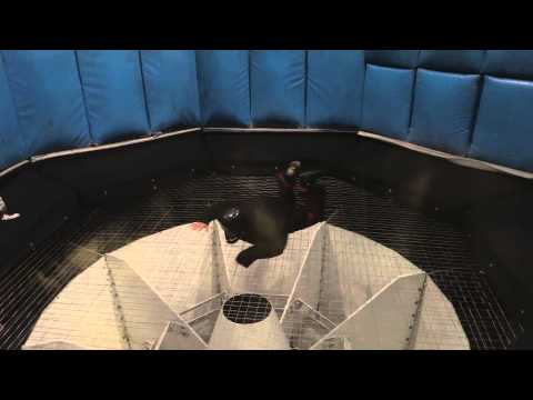 Las Vegas Indoor Wind Tunnel Skydiving