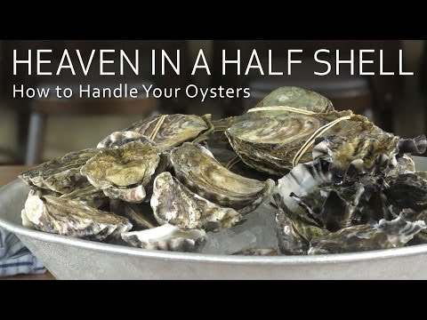 Heaven in a half shell - how to handle your oysters