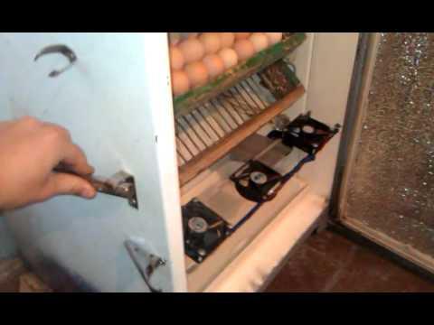 Инкубатор с холодильника своими рукам