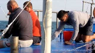 морская рыбалка Затока