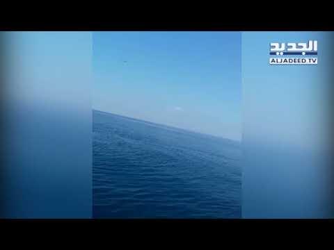 حوت في بحر صور