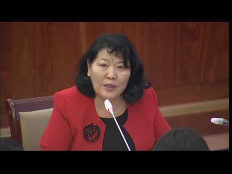 Н.Ганибал: Журмаар зохицуулагдаж байсан асуудал хуулиар зохицуулагдах болсон нь зүйтэй