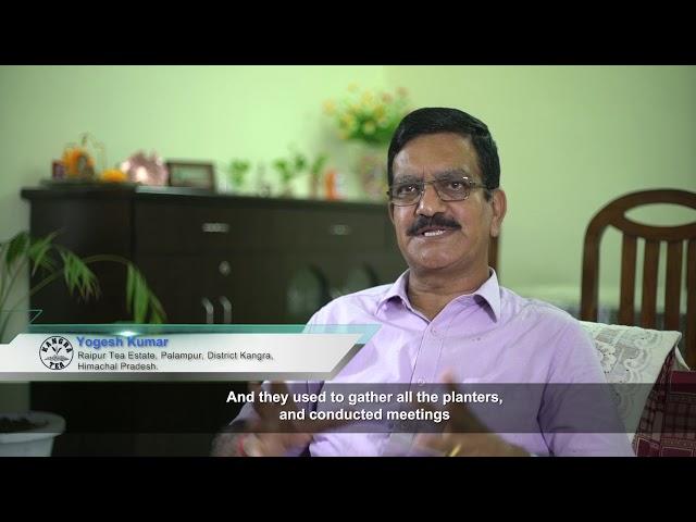 Revival of Kangra Tea Industry CSIR IHBT Palampur