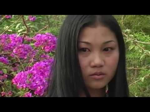 movie dab maiv paj ntxhee  3 (видео)