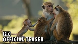 Nonton Monkey Kingdom Official Teaser #1 2015 HD Film Subtitle Indonesia Streaming Movie Download