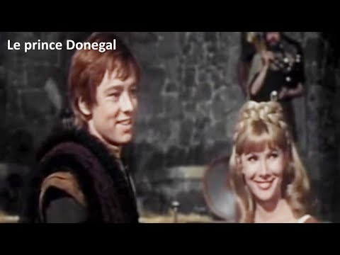 Le Prince Donegal 1966 (The Fighting Prince Of Donegal) - Film Réalisé Par Michael O'Herlihy