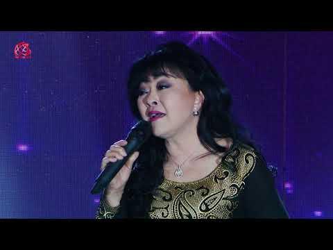 Ca sĩ Hương Lan tỏa sáng trong đêm Sắc Màu Tri Ân 2017