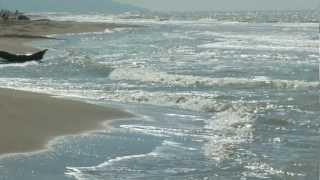 Principina a Mare Italy  City new picture : Principina a Mare beach, Maremma Tuscany