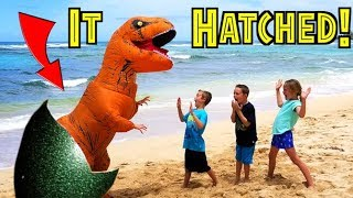 OUR DINOSAUR EGG HATCHED! T-Rex in Real Life! Jurassic World (skit)