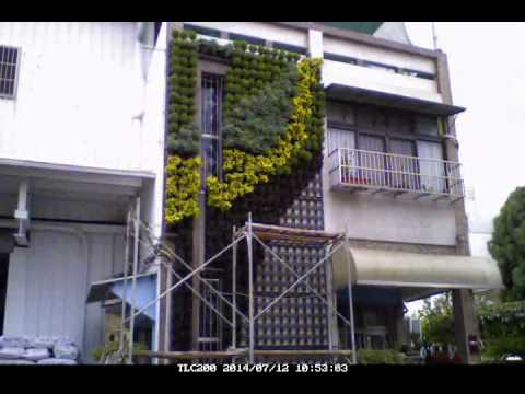 Sheng San Green Wall Kit