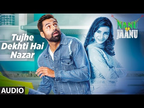 Tujhe Dekhti Hai Nazar Full Audio Song | Nanu Ki J