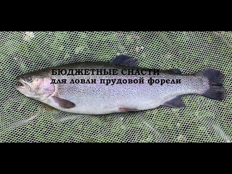 все о рыбалке на водоемах самары