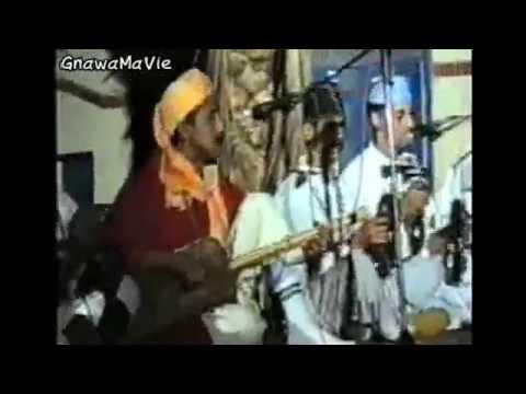 GnawaMaVie & Festival Gnaoua & Musiques du Monde