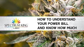 Grower's power bill. How to know how much you really pay by Spectrum KING LED
