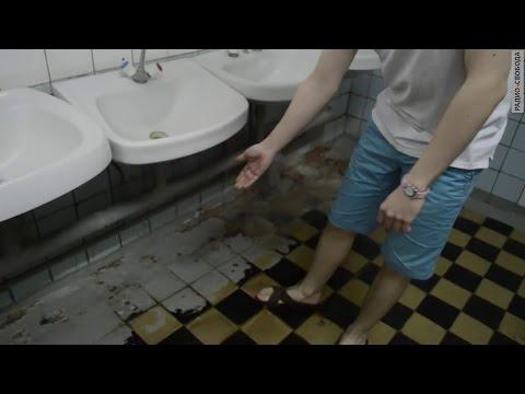 Клопы и тараканы в общежитиях главного вуза России