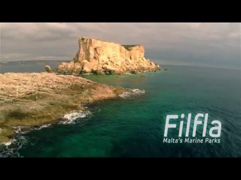 Watch: Trailer for documentary featuring Filfla, to be released mid-2016