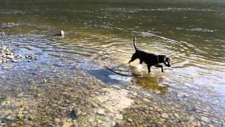 Tunkhannock (PA) United States  city photos gallery : Cheyenne on Susquehanna River near Tunkhannock PA