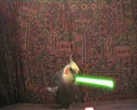 Pajarito Jedi