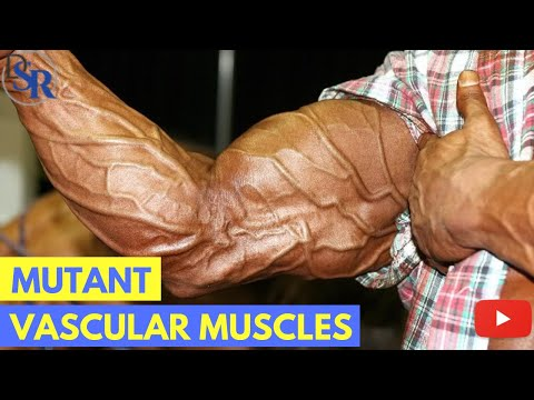 р 5 Proven Tips To Get Bigger, Harder, More Vascular Muscles