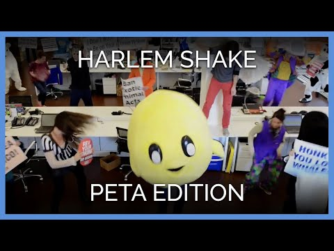 Watch: PETA Does the Harlem Shake