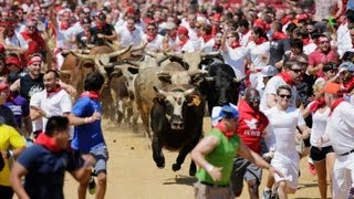 Petersburg (VA) United States  city pictures gallery : Thousands Run With The Bulls In US, in Petersburg, Virginia.