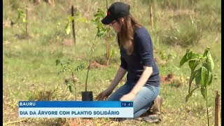 Dia da Árvore é comemorado com plantio solidário em Bauru