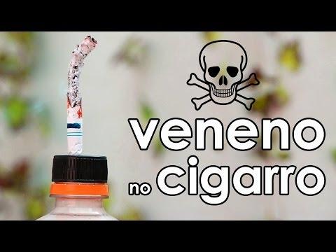 Conheça os venenos do cigarro (experimento de biologia)