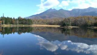 北海道観光映像(知床五湖)