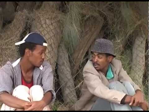 Gudamennia qolea (New Eritrean Comedy)