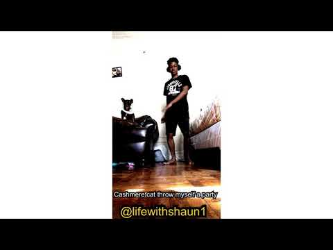 Cashmere cat throw myself Ft. 2 chainz and tory lanez party Dance freestyle
