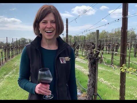Taste with Heidi: Olivet Lane Pinot Noir