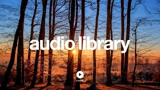 [No Copyright Music] Acoustic   Folk Instrumental - Hyde   Free Instrumentals