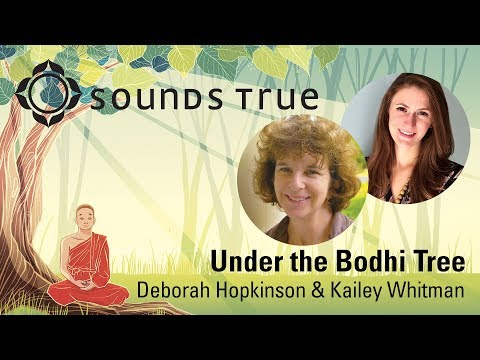 Under the Bodhi Tree | Book Reading