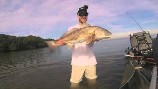Motive Outdoors Tampa Bay Redfish, Kayak Sight Fishing, Old Town Predator XL Minnkota