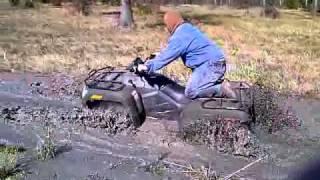 8. arctic cat 450 stock tires