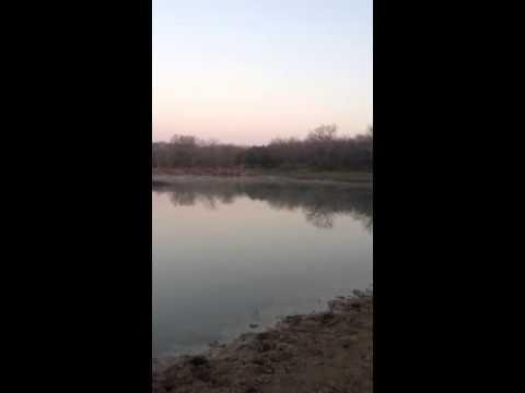 101.5 acres Trenton, TX