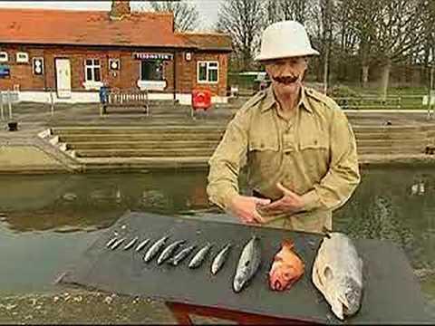 Fish Slapping for fun & profit