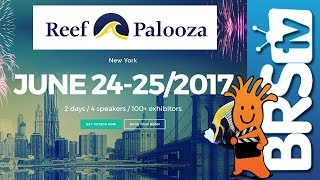 BRStv Wants to Meet You at Reef-A-Palooza New York!