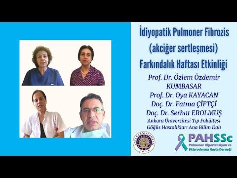 PAHSSc - 14-20 Eylül 2020 İdiyopatik Pulmoner Fibrozis Farkındalık Haftası - 2020.09.21
