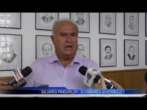 SALVAREA PANDURILOR – SCHIMBAREA GUVERNULUI?