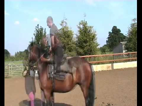 Trick Riding  – Ben Loyd Holmes playing on the horse