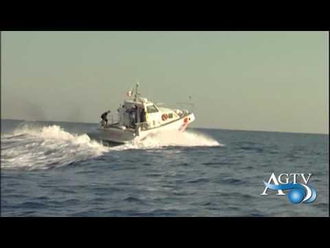 Pesce non tracciato, 23 mila euro di sanzioni