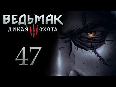 Ведьмак 3 прохождение игры на русском - Знакомство с Ивасиком [#47]