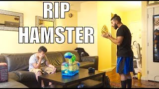 Yesterday's Vlog: https://youtu.be/Qo8__lQFHMEHamzah pulled the meanest prank on me telling me that my hamster died! Hope you all have an amazing day! SUBSCRIBE for Daily Videos :)Twitter: @omgAdamSalehFacebook: Adam SalehInstagram: @adamsalehSnapchat: adamsaleh93SUBSCRIBE for Daily Videos :) Thank you AdoomyGang !! xhttp://www.youtube.com/user/ASAVlogsMain Channel: http://www.youtube.com/TrueStoryASAAdam Saleh EVENT BOOKING:To book Adam Saleh to perform at your event or to tell us about an event in your area that you would like to see him perform at please email: info@AdamSalehworldwide.com