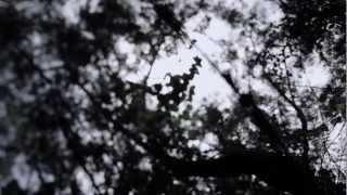 Video Chladni Chandi - Brahma Brahma (Official Music Video) MP3, 3GP, MP4, WEBM, AVI, FLV April 2018