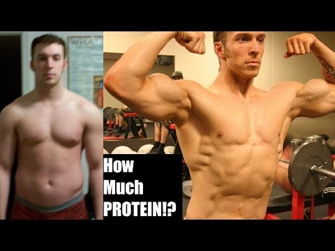 HOW MUCH PROTEIN DO YOU REALLY NEED TO BUILD MUSCLE? (The Truth Ft. Eric Helms)
